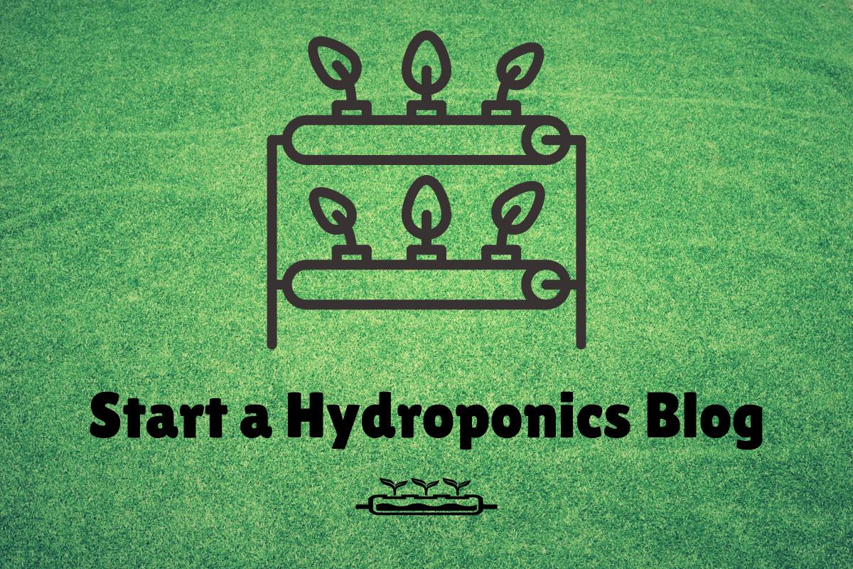 start a hydroponics blog
